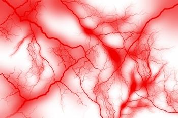 毛細血管.jpg