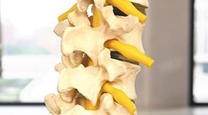 頸椎損傷①.jpg